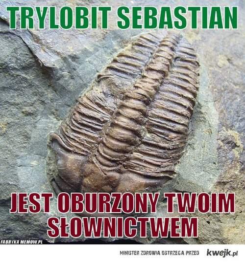 trylobit Sebastian