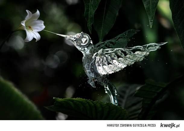 mechaniczny koliber