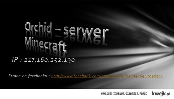 serwer mc orchid non-premium