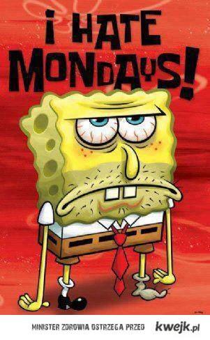 Zwonu poniedziałek