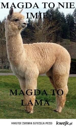 Magda to nie imię