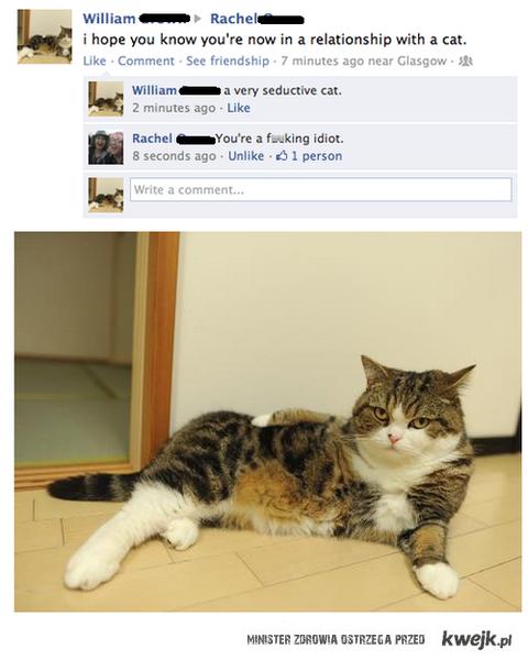 jestes teraz w zwiazku z kotem