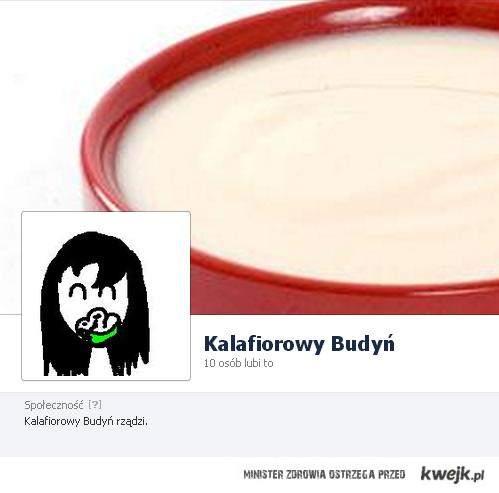 Kalafiorowy Budyń na FB