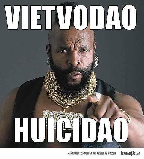 VietVoDao