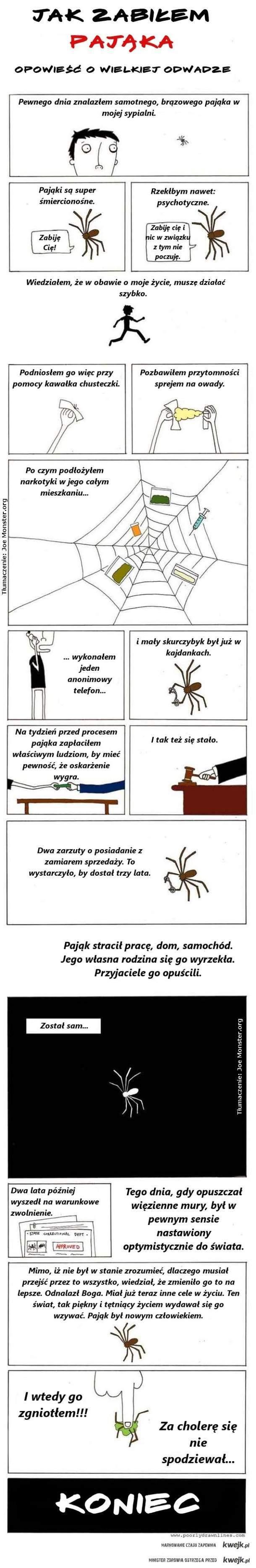 Opowieść o zabiciu pająka