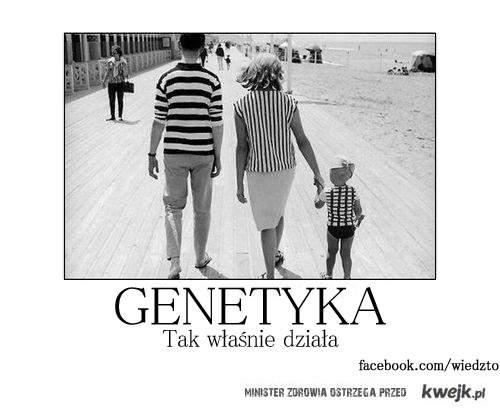 Tak właśnie działa genetyka
