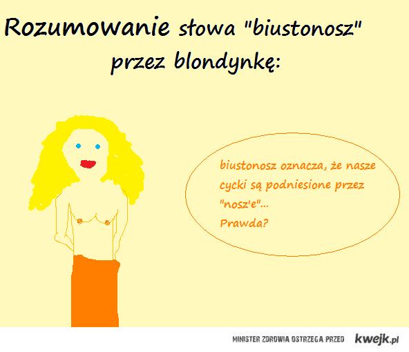 rozumowanie blondynki