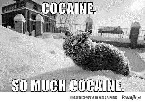 So much cocaine :D
