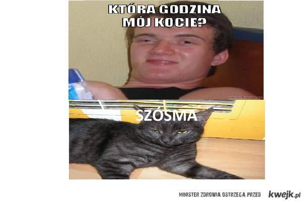 Kot Zjaranego Zbyszka