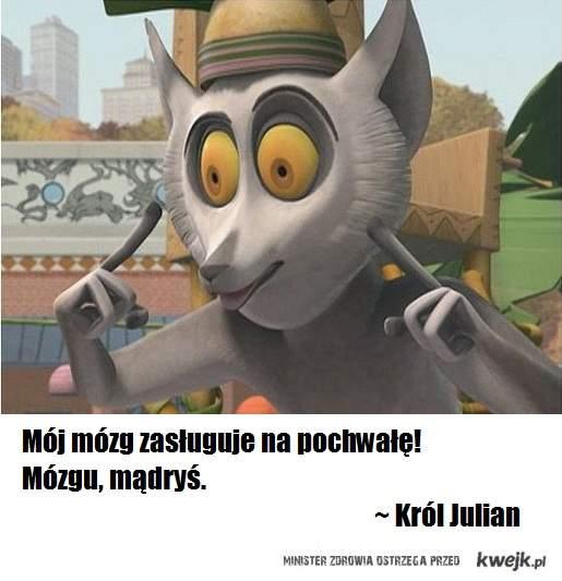 Król Julian jest najmądrzejszy!