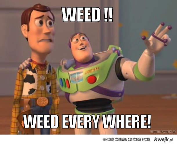weed !!