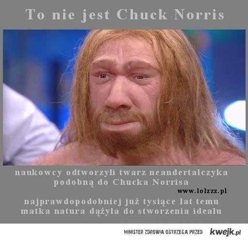 lolzzz pl neandertal