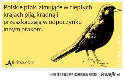 e-kartka