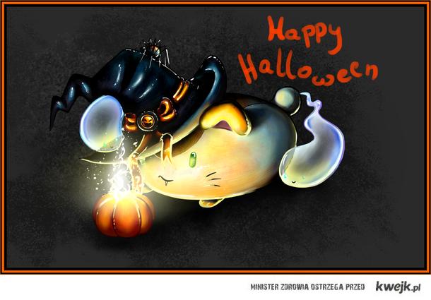 Halloweenowy kotek