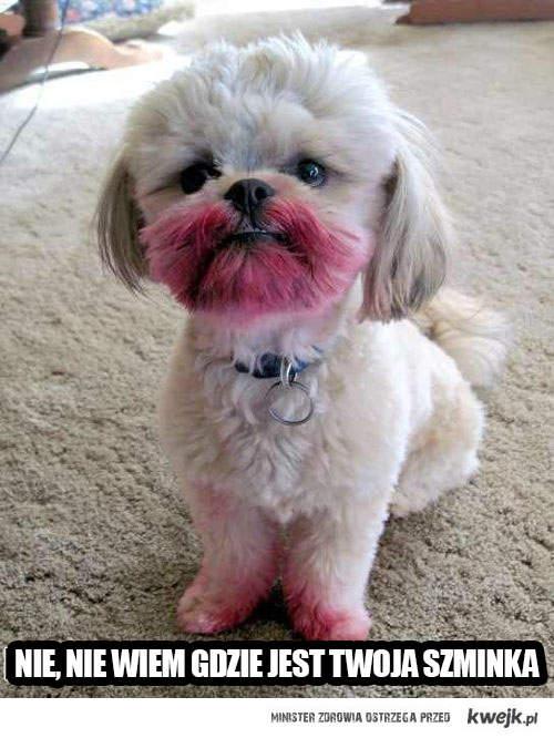 nie wiem gdzie jest twoja szminka