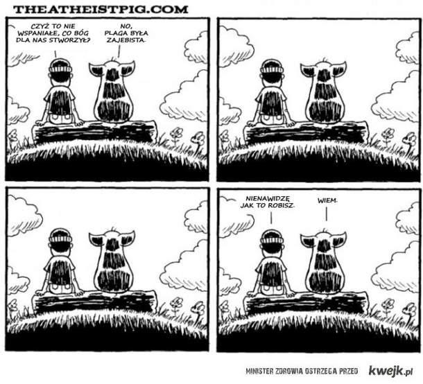 ateistyczna świnia