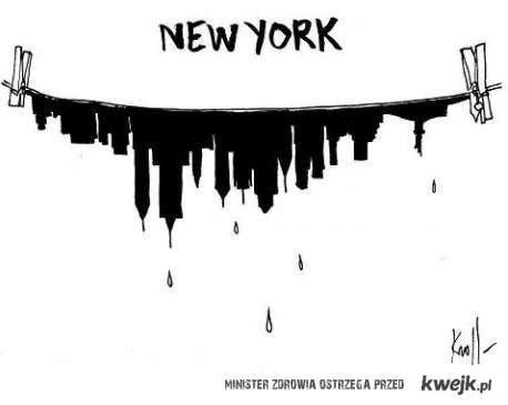 Nowy Jork po katastrofie