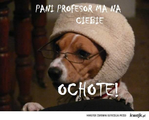 P.PROFESOR