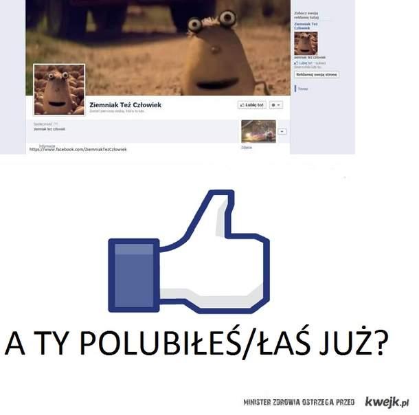 ZIEMNIAK TEŻ CZŁOWIEK NA FB