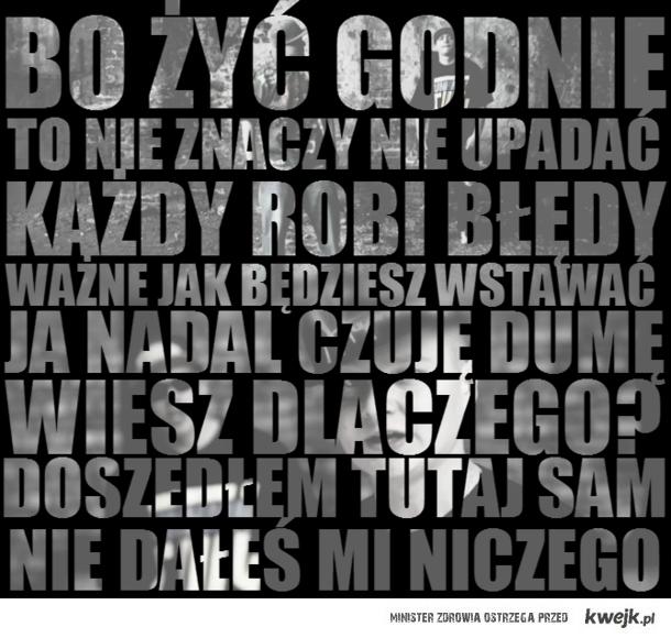 """Młody M feat. Słoń - Nikt mi tego nie dał nikt mi tego nie zabierze """"Bo żyć godnie to nie znaczy nie upadać. Każdy robi błędy, w"""