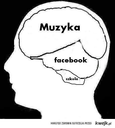 Mój mózg .