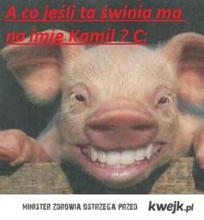 Kamil ?? :)