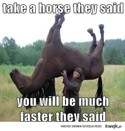 take a horse they said..