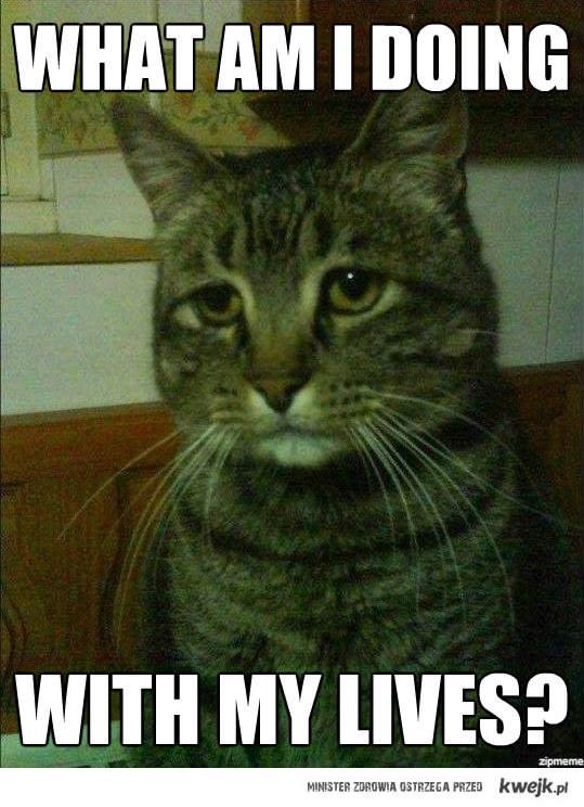 Smutny kot