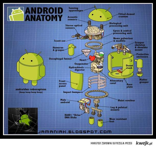 Android anatomy
