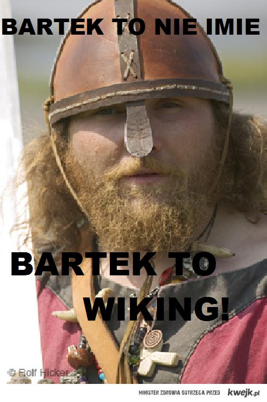 BARTEK WIKING