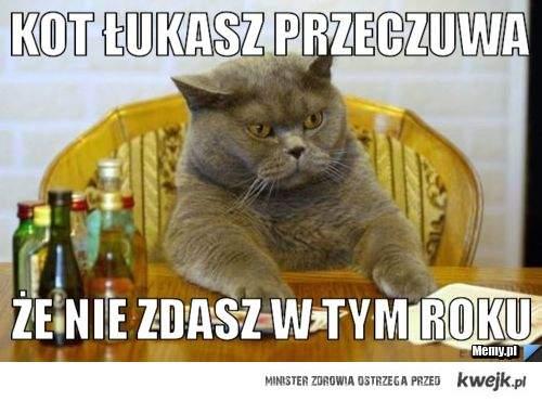 Kot Łukasz