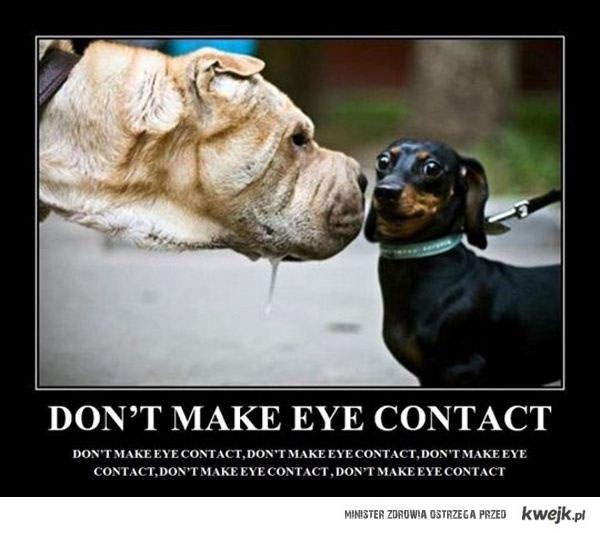 niepatrz w oczy