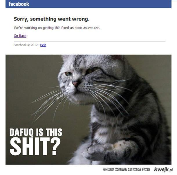 Facebook, dafuq?