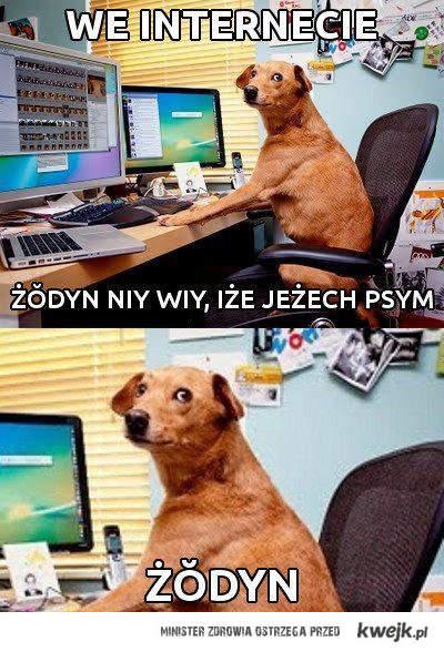 nikt nie wie ze jestes czeskim psem