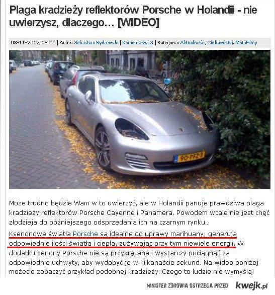 Plaga w Holandii