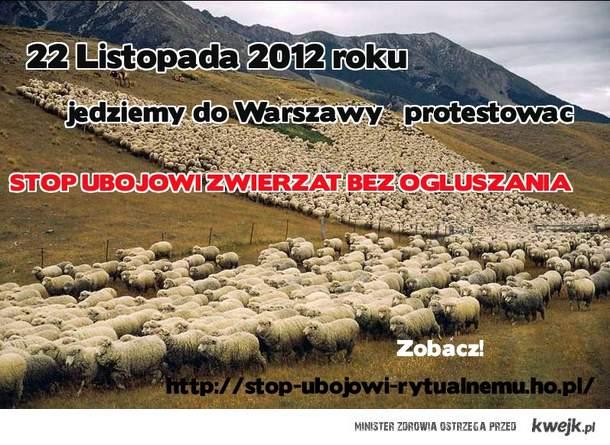 Protestujemy przeciwko zabijaniu zwierząt bez ogłuszania  22.11.2012 roku w Warszawie!