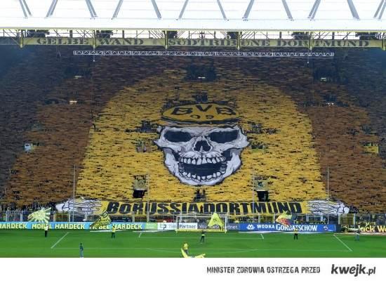 BVB Skull