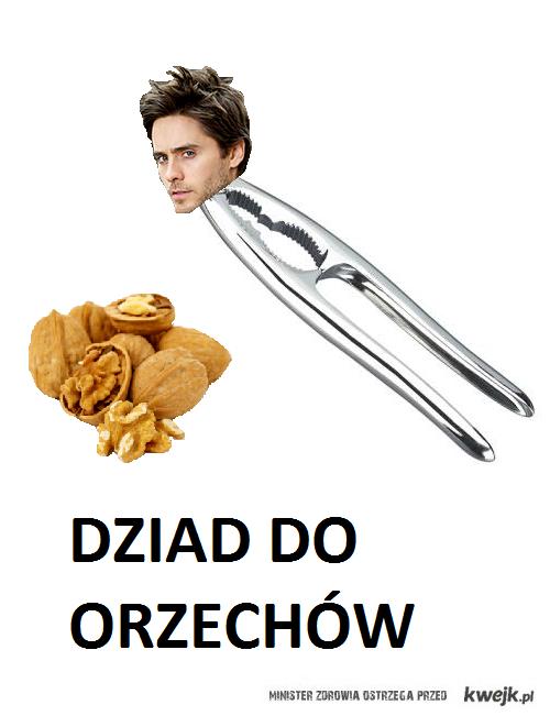 DZIAD