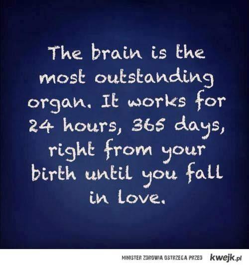 ach ten mózg