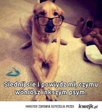 inny pies?