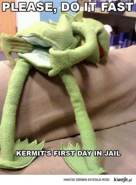 Kermit w więzieniu