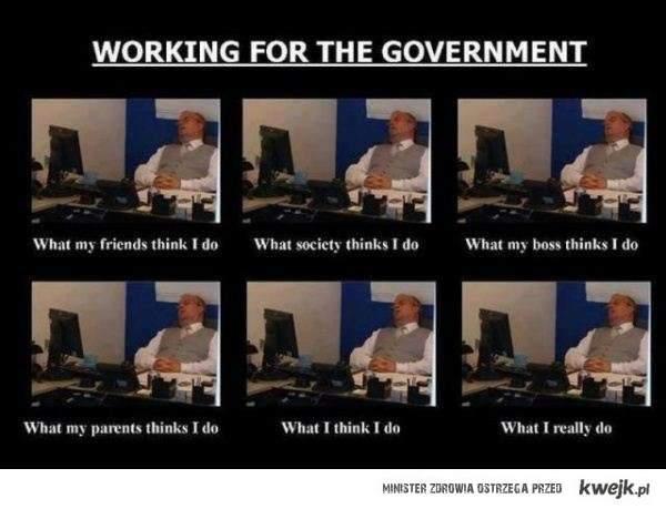 praca w rządzie