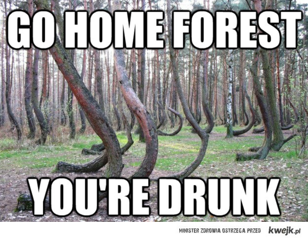 Go Home Forest