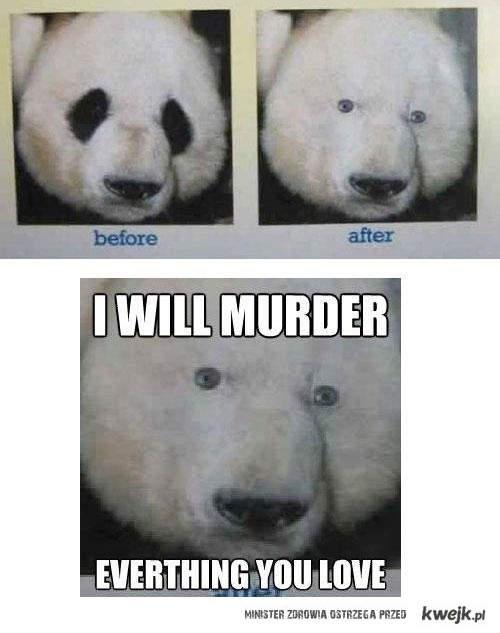 panda bez plam