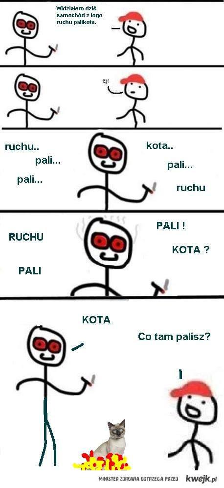 PALIKO T