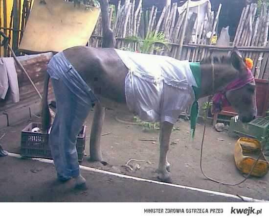 Mule fashion