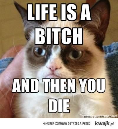 Lifes a grumpy