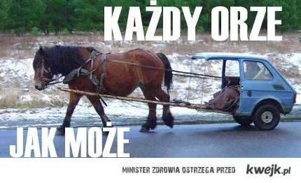 Każdy orze jak może- Polska