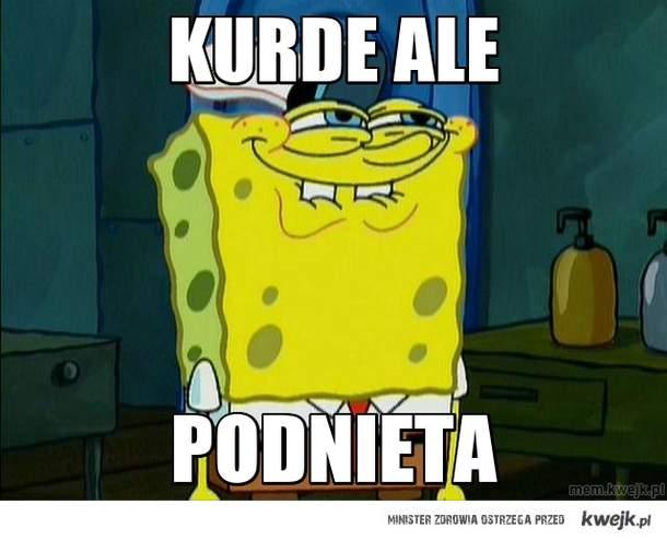 kurde ale