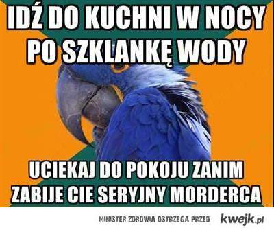 Paranoiczna papuga